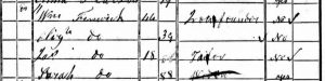 James Fenwick - 1841 census crop - lo-res 50k